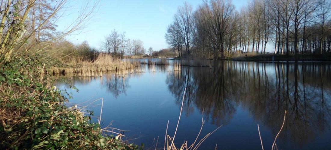 Geduld Vangt Vis organiseert in de Haven van Oudenbosch een aantal Herfst / Winterwedstrijden en wel op